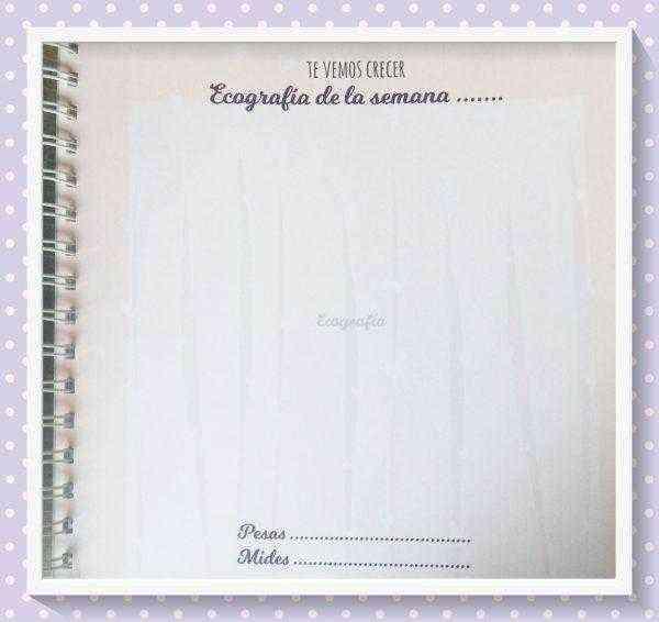 diario de embarazo ecografia
